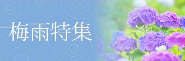 関東 梅雨明け 2020